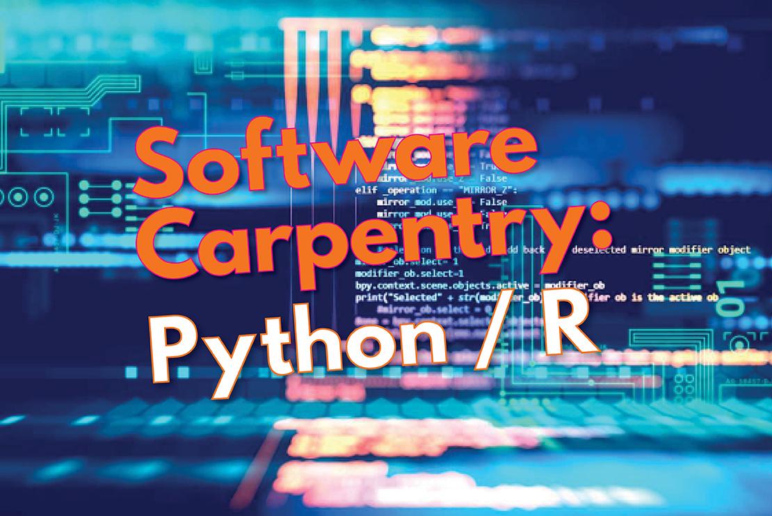 Software Carpentry Python/R
