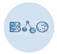 BAO Search logo